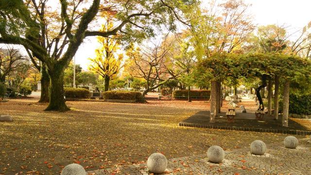 近隣の鷹匠公園。